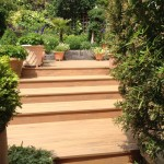 Tiered garden / steps & planting.